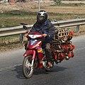 Vietnamese Rooster Transporter (4168602611).jpg