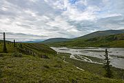 View up Joe Creek above Firth River, Ivvavik National Park, YT.jpg