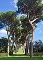 Villa Barberini Pontifical Gardens, Castel Gandolfo (39840057593).jpg