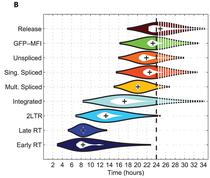 Violinplot-hiv-paper-plot-pathogens.png