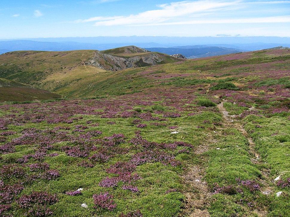 Vista de Lombo do Roncin junto a Peña Trevinca - panoramio