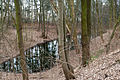 Volkspark Rehberge Entenpfuhl 14.03.2016 17-14-32.jpg