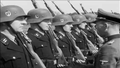 Waffen-SS memorial and raw footage (Denmark, 1944) Still 08489 of 14239.png