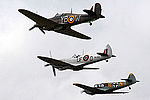 Warbirds (5113345568).jpg