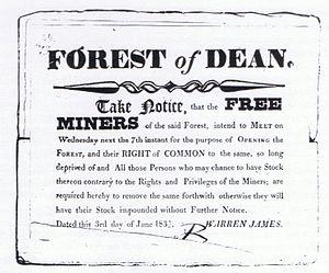 Warren James - Warren James' notice to the Free Miners