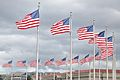 Wash Monument Ring of Flags.jpg
