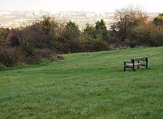 McIlroy Park