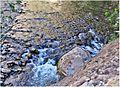 Water Art (2), Zion NP, Riverside Walk 5-1-14zga (14295470038).jpg