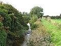 Weir, Afon Gele - geograph.org.uk - 966981.jpg