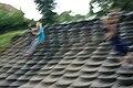 Westfalenpark-100818-17538-Robinson.jpg