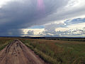 Wet season in the Maasai Mara (13993497574).jpg