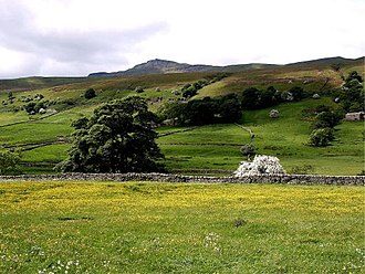 Wild Boar Fell - Image: Wildboar fell june