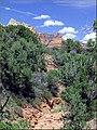 Wildlands Trail, Sedona, AZ 7-30-13p (9557235822).jpg