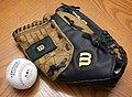 Wilson baseball bag.jpg