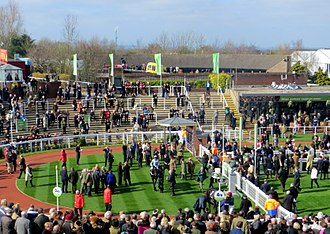 Cheltenham Festival - The winners' enclosure in 2014