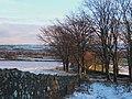 Winter in West Lothian - geograph.org.uk - 1109875.jpg