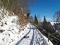 Winterwanderung, Wolfratshausen, 6 - panoramio.jpg