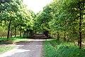 Woodland Walk, Rivington - geograph.org.uk - 1287410.jpg