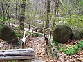 Woodland path Wave Hill 1.jpg
