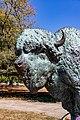World's Fair Bison Prairie King Humboldt Park Chicago 2020-0650.jpg