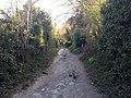 Worthing, UK - panoramio (108).jpg