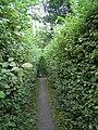 Wrocław, Park Brochowski 2009-09-06 - 136 labirynt grabowy.jpg