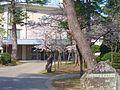 Yokotekoukou03.JPG