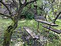 Zátišie - panoramio (1).jpg