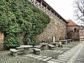 Zary walls.JPG