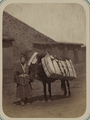 Zeravshan District. City of Samarkand. A Man with a Horse WDL11137.png
