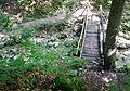 Zipfelbachschlucht - panoramio (8).jpg