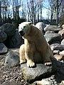 Zoo isbjørn - panoramio (4).jpg