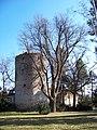 Zruč nad Sázavou, Kolovratský dub a Kolowratská věž (01).jpg