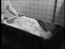 Bestand:Zuurkoolfabricage-517979.ogv