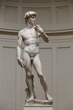 'David' by Michelangelo Fir JBU005 denoised.jpg