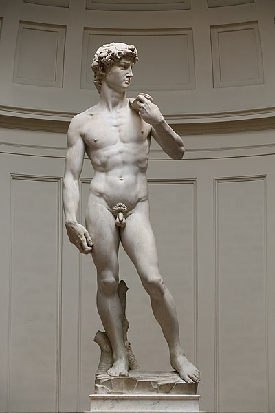 https://upload.wikimedia.org/wikipedia/commons/thumb/e/ec/%27David%27_by_Michelangelo_Fir_JBU005_denoised.jpg/400px-%27David%27_by_Michelangelo_Fir_JBU005_denoised.jpg