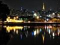 (2006) Sao Paulo Skyline - 237971526.jpg