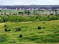 Вид на Пасечки - panoramio.jpg