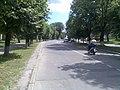 Вулиця Шевченка (Корсунь-Шевченківський) (2).jpg
