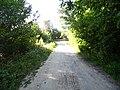 Дорога в центр - panoramio (3).jpg