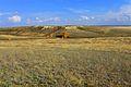 Живописный холм - panoramio.jpg