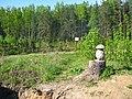 Местность Ферменка и долина реки Каменки Вид в районе Ферменского пруда.JPG