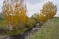 Осень пришла - panoramio (1).jpg