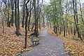 Парк «Березовий Гай» (Київ), вул. Вишгородська,7.jpg