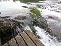Парк природе ријека Уна 89.jpg