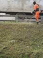 Покос травы в середине сентября (МКАД, Москва) 2.jpg