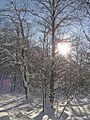 Р.Инзер - Лемеза (Перевал-2) - panoramio.jpg