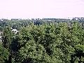 Чернигов в зелени. Фото Виктора Белоусова. - panoramio.jpg