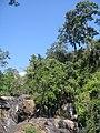 น้ำตกผาเสื่อ(น้ำน้อยจัง) - panoramio.jpg