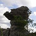 หินอูด(ข้าพเจ้าตั้งให้เอง)ป่าหินสวย HS3CMI - panoramio.jpg